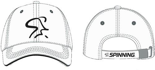 Baseball Caps  (various colors)